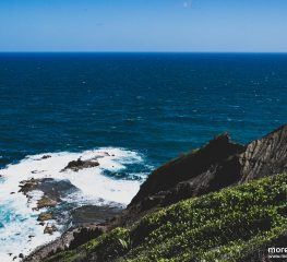 Park Krajobrazowy Martyniki – De La Caravelle