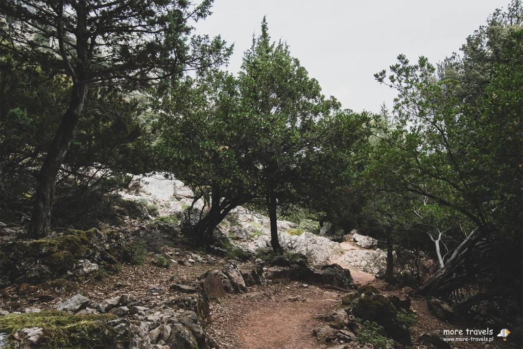 Trasa na Kanion gorropu